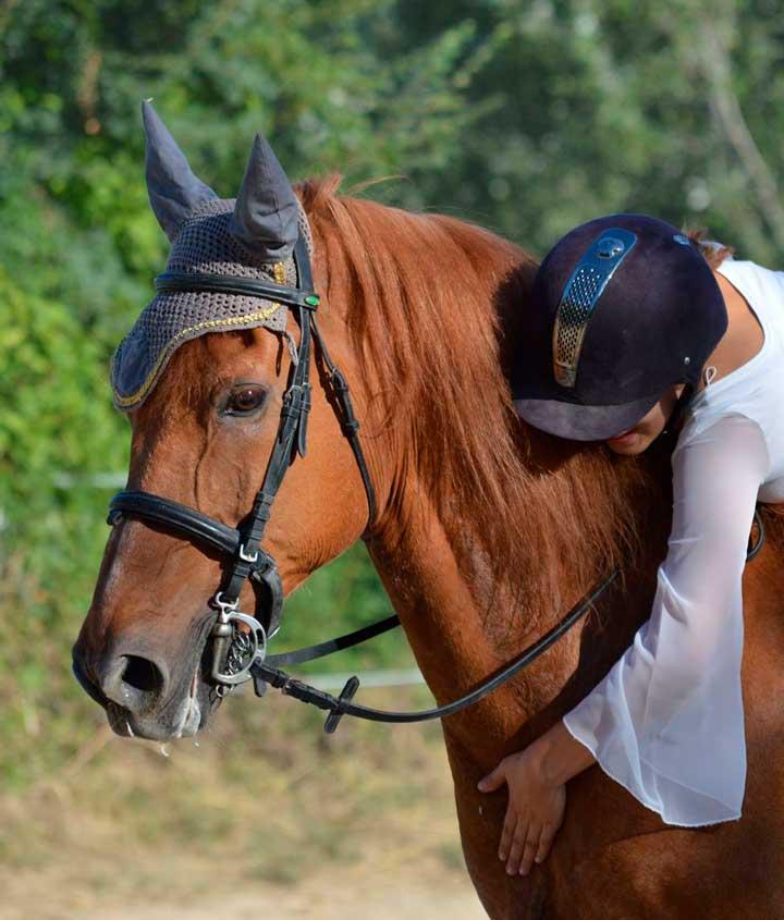 Haras-du-Nizon-centre-equestre-poney-club-equitation-manege-cours-particulier-gard-st-laurent-des-arbres-classique10