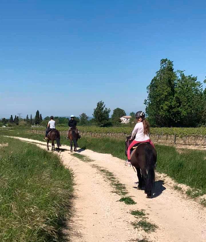 Haras-du-Nizon-centre-equestre-poney-club-equitation-manege-cours-particulier-gard-st-laurent-des-arbres-consignes-rando-loisirs
